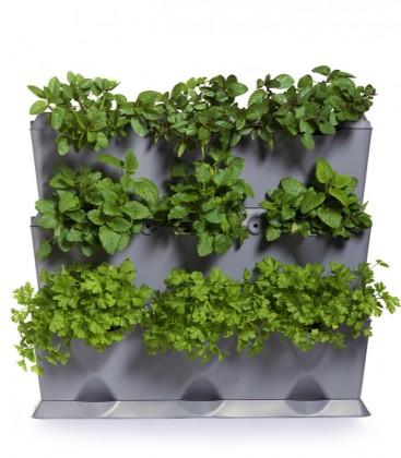Minigarden Vertical