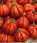 """Tomato """"Cuor di bue"""", Minigarden Organic Seeds"""