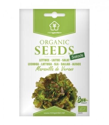 "Lettuce ""Maravilla de Verano"", Minigarden Organic Seeds"