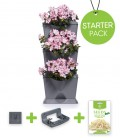 Minigarden Vertical Vegetable Garden Starter Pack